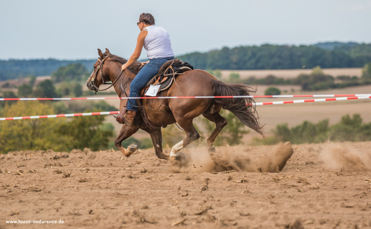 Quarter Mile Race - Easy Ranch | HORSE & ENDURANCE Photography